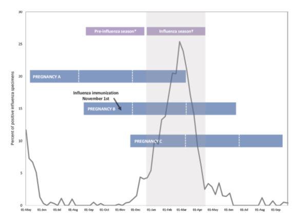 Figuur 2. Vaccineren van zwangeren in verschillende trimesters tijdens om rondom het griepseizoen [27].