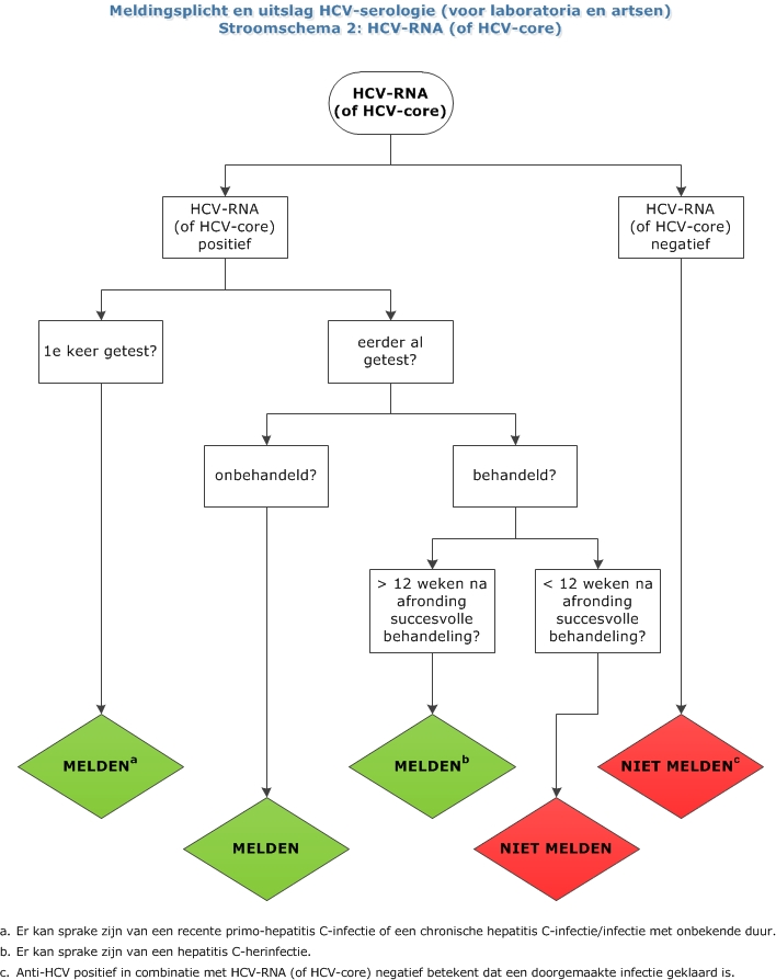 Hepatitis C stroomschema 2.jpg